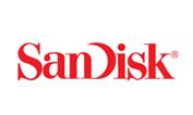 sand-disk